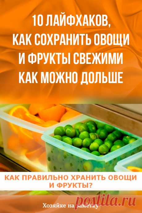 10 лайфхаков, как сохранить овощи и фрукты свежими как можно дольше