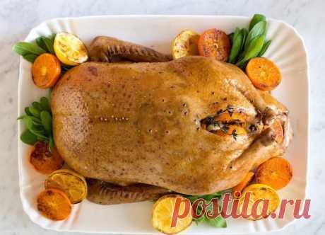 Простые и вкусные блюда из индоутки – украшение праздничного стола! — Вкусные рецепты
