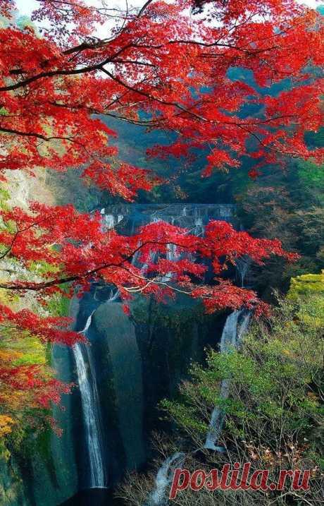 Autumn in Fukuroda Waterfall, Daigo, Ibaraki, #Japan | Igor Mamantov приколол(а) это к доске Japan