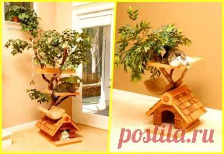 Домики для кошек - самые удачные идеи - ЖЕНСКИЙ МИР - медиаплатформа МирТесен