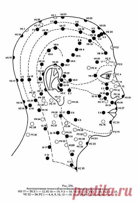 биологически активные точки на голове человека фото с описанием — Яндекс: нашлось 13млнрезультатов