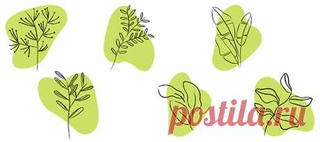 Иконки Зелёные картинки для хайлайтов инстаграм, скачивайте на сайте instapik.