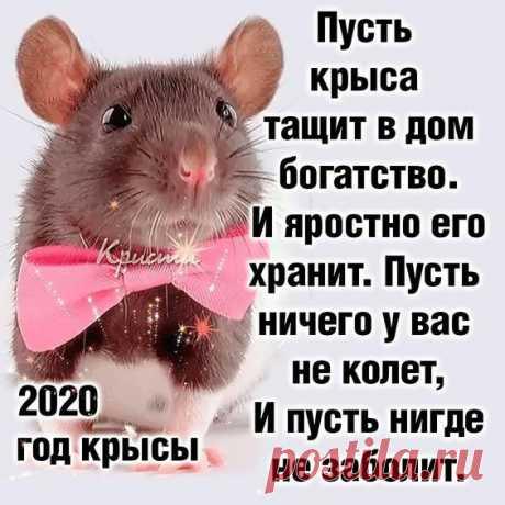 СЛАЙД-ШОУ. Поздравление с НОВЫМ 2020 ГОДОМ ! ...