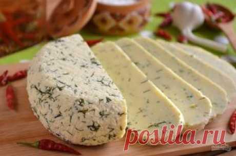 El queso de casa de la leche y la crema agria - poshagovyy la receta de la foto en Повар.ру