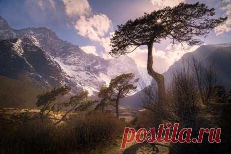 The unusual Himalayas. Sagarmatha National Park, Nepal. The author of a photo is Maxim Slastnikov: