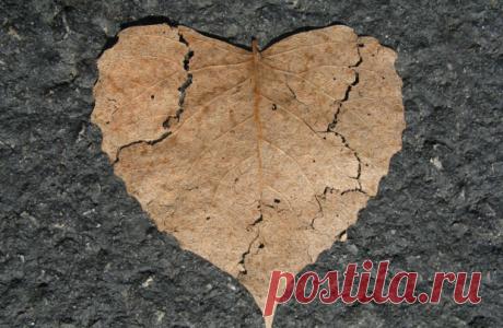 Любовный гороскоп на ноябрь 2019: в жизни свободных Раков возможен служебный роман