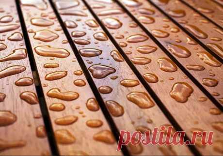 Самое лучшее и дешевое масло для обработки древесины. Эффективнее льняного масла, воска, лака и любой пропитки   Дачный СтройРемонт   Яндекс Дзен