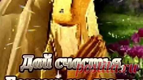 video_2854970070391.mp4