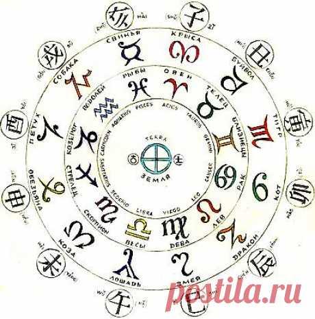 Китайский гороскоп.