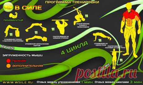 53 тренировочных программы для Начинающих, Продвинутых, Профессионалов и Мастеров от сайта WSILE.RU - WorkOut
