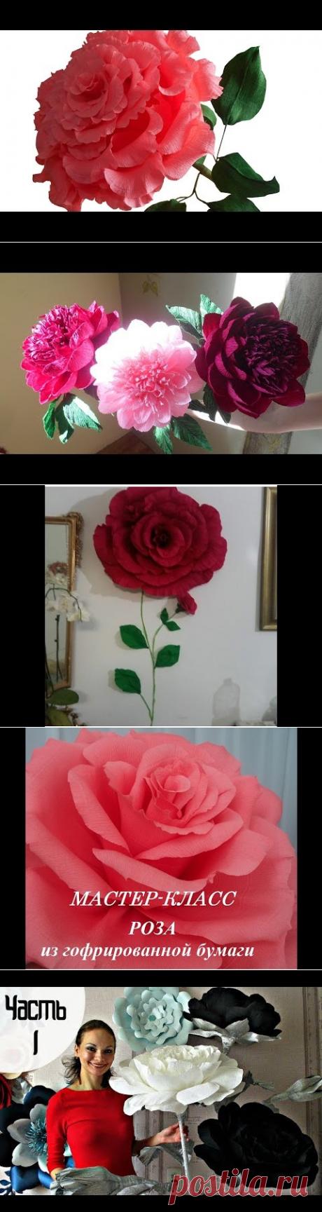 (169) Большая роза из гофрированной бумаги, мастер класс - YouTube