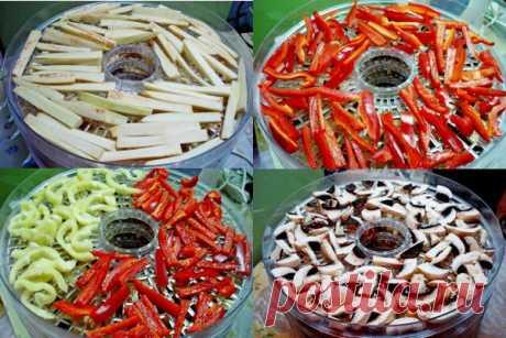Сушеные овощи на зиму и пример их использования | CityWomanCafe.com