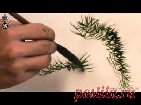 """Обучение рисованию деревьев при помощи живописи у-син Часть 6 """"как рисовать листву деревьев"""""""