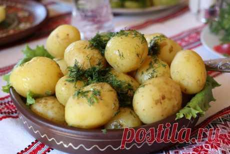 Полностью оправдан. Картофель признали диетическим продуктом - Интернет-газета «Ридус» (ridus.ru) - медиаплатформа МирТесен Но самой вкусной, жареной картошки это, конечно, не касается.Картошка картошке рознь. Самая вкусная — обязательно вредная, жареная или перетертая в пюре с увесистой порцией сливочного масла. Именно потому, что такие способы приготовления являются самыми распространенными, картофель принято считать...