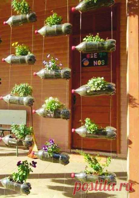 Простые, необычные, бюджетные идеи для дизайнерских клумб в вашем саду — Сделай сам, идеи для творчества - DIY Ideas