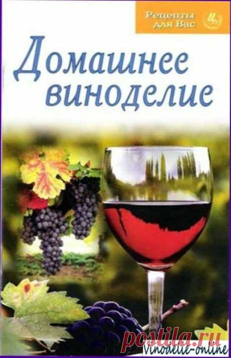 Рецепты вин из трав - Вино из трав
