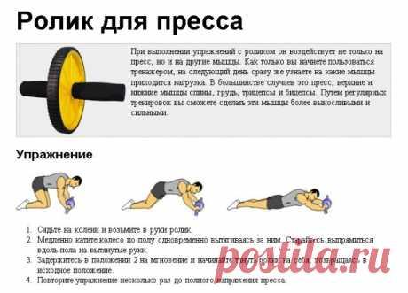 Название: ➤ Польза упражнений с роликом для пресса и преимущества тренажера Найдено в Google. Источник: tobe-fit.ru