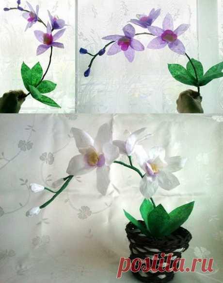 Чудесная орхидея из гофрированной бумаги — Сделай сам, идеи для творчества - DIY Ideas
