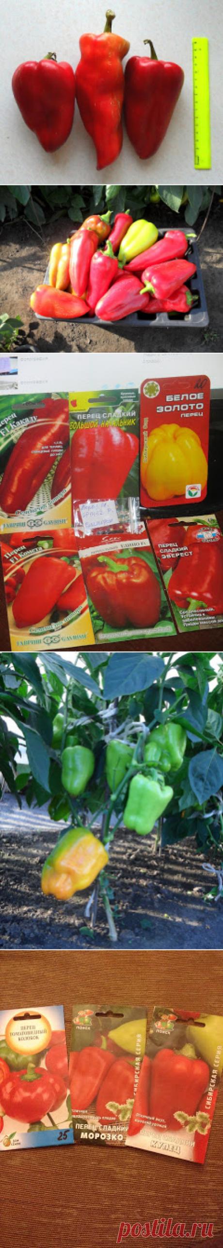 Вкусный Огород: Сорта перцев - отзывы