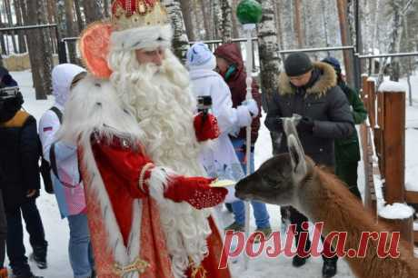 Дед Мороз из Великого Устюга приехал в Красноярск