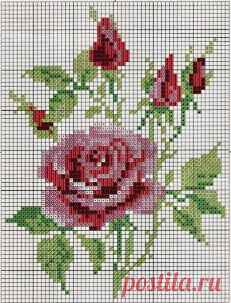 Подборка схем и идей вышивки с розами