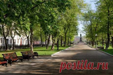 Гоголевский бульвар в Москве: почему раньше здесь никто не хотел гулять | О Москве нескучно | Яндекс Дзен