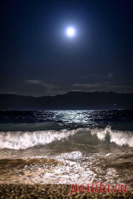 "orchidaorchid:\u000a\""Blue moon by Zarko Piljak\u000a\"""