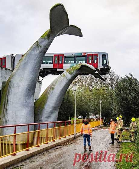 В пригороде Роттердама поезд сошёл с рельсов и выехал за пределы платформы. Состав мог упасть с высоты 10 метров и разбиться вдребезги, но этого не произошло. Всё благодаря скульптуре, изображающей огромный хвост дельфина.  ▪️Пассажиров в вагонах не было, а машинист смог беспрепятственно выбраться.  Фото: ТАСС