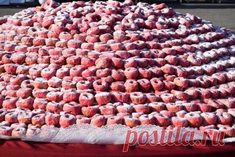 Кондитерская композиция из 22,8 тыс. пончиков в Кузбассе попала в Книгу рекордов России | События