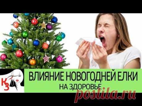 Как Новогодняя елка влияет на здоровье человека. Чем елка может подпортить веселье - YouTube