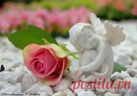 Мир Ангела