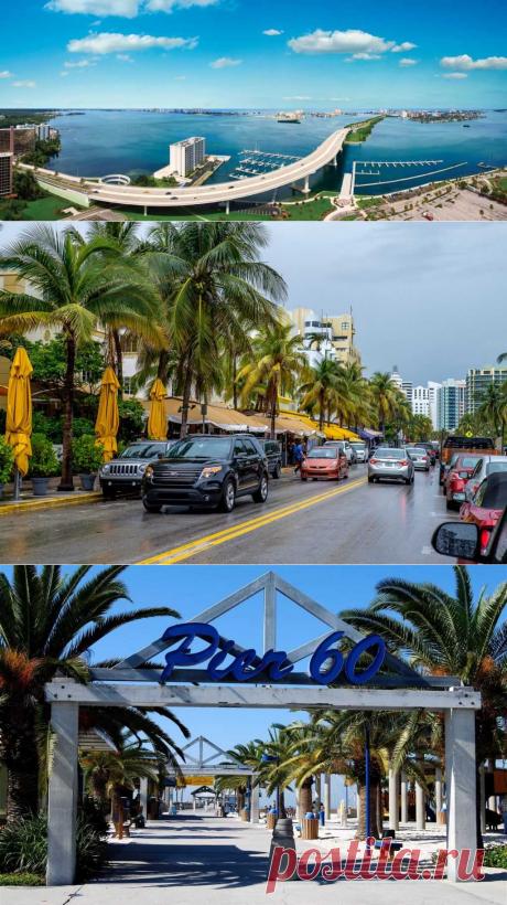 Флорида: что нужно знать туристу, чтобы не омрачать свой отдых