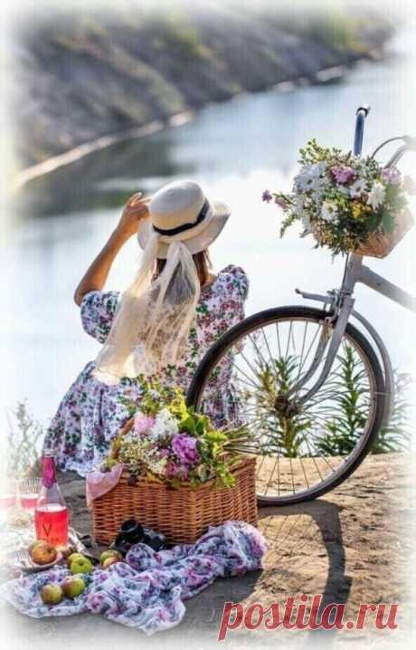 «Те, кто начинает новый день со встречи с морем, не могут быть злыми или несчастными. И какое это море - летнее или зимнее, - не имеет значения. Когда видишь, как просыпается солнце, как мягко потягивается вода, жмурясь от первых лучей, понимаешь, что совершенно не важно, на чём спать, что у тебя есть и куда нужно спешить после того, как проснёшься. Главное - дождаться утра, чтобы открыть глаза и обнять взглядом море».. Эльчин Сафарли