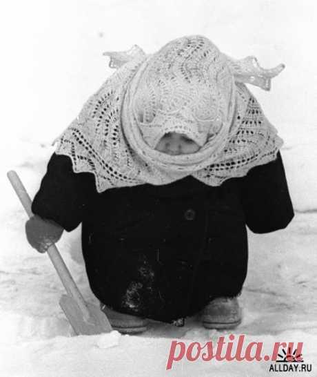 Татьяна Петрова - Лос-Анджелес, Калифорния, США, 68 лет на Мой Мир@Mail.ru