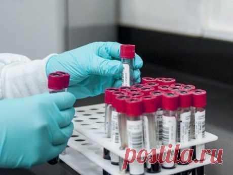 Утром люди сами могут проверить, не заразились ли они коронавирусом, – медик | Новости