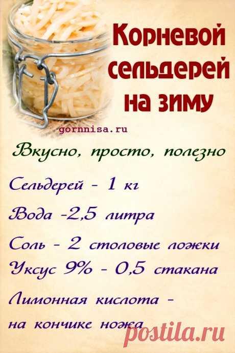 Корневой сельдерей на зиму. Просто, вкусно, полезно. Рецепт — ГОРНИЦА