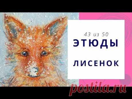 4️⃣3️⃣ ЛИСЕНОК (гуашь+масляная пастель). Серия «50 этюдов»