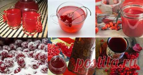 Калина - 19 рецептов приготовления пошагово!