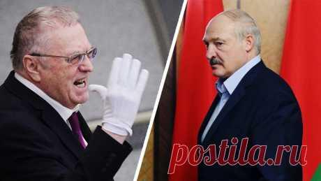 Жириновский отвесил Лукашенко коронаоплеуху