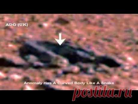 На Марсе нашли доказательство жизни - YouTube