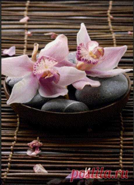 Схема вышивки «Орхидеи» - Вышивка крестом