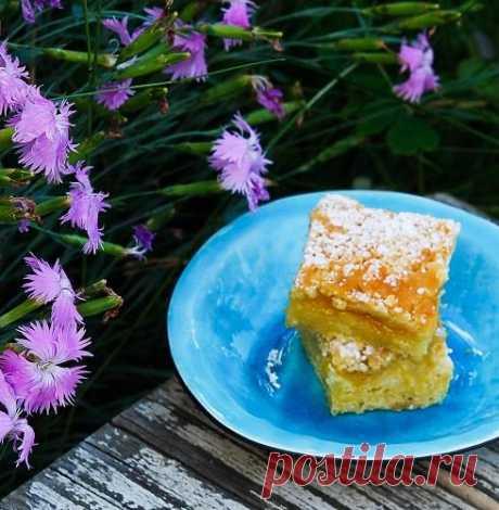 Лимонный пирог. Ленивые наблюдения со смешинкой - Публикации