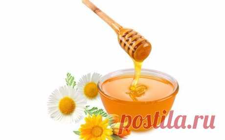 Полезные свойства меда, смешанного с холодной водой — Залог красоты
