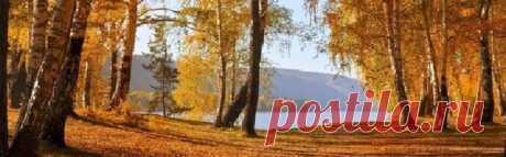 №90 ** Музыкальный калейдоскоп Осени ** Музыкальные картинки – ▷▶ Мир Музыки 🎧, пользователь Андрей Спицкий | Группы Мой Мир