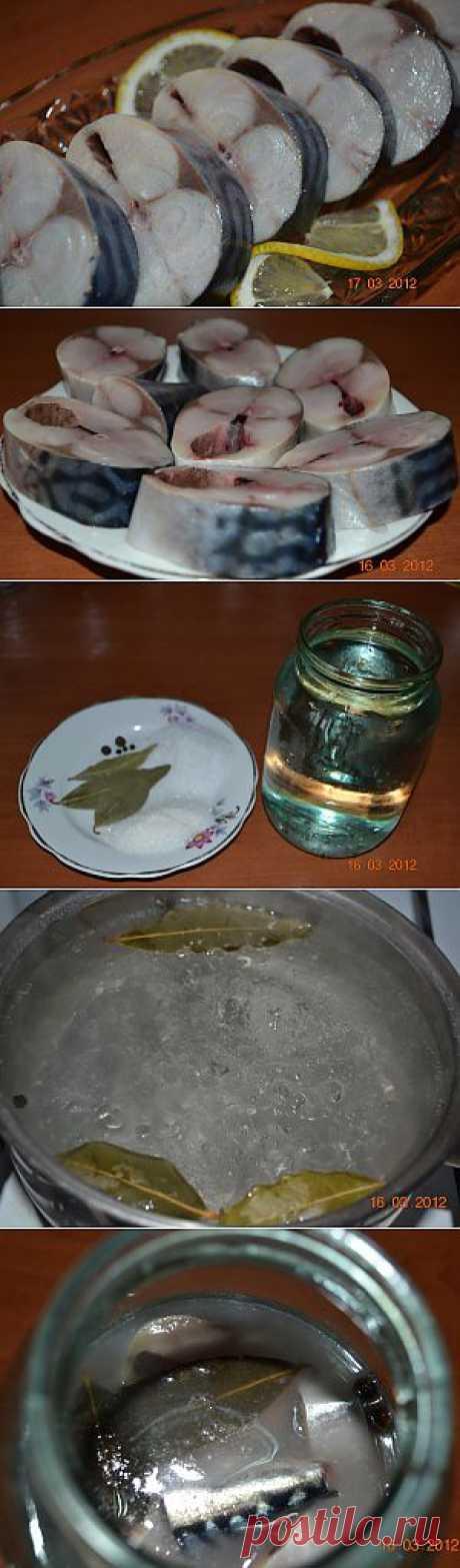 Засолить скумбрию в домашних условиях. | Народные знания от Кравченко Анатолия