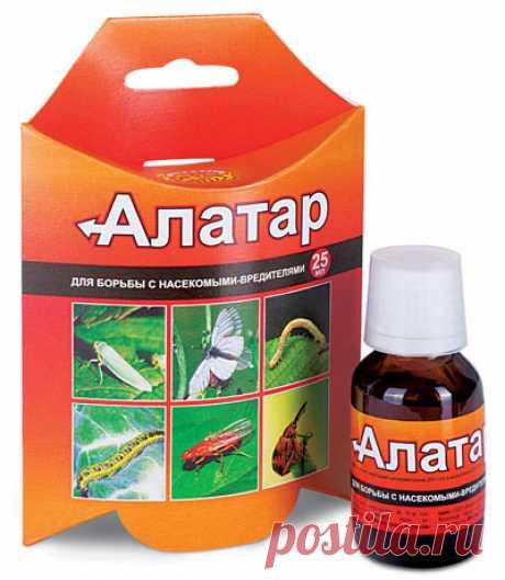 Компания Ваше хозяйство - «Алатар» — универсальный препарат для защиты большинства садово-огородных культур от вредителей