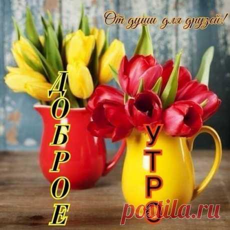 Доброе утро для друзей