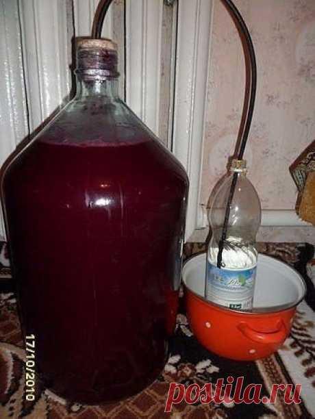 НДомашнее вино из... старого никому не нужного варенья!вости