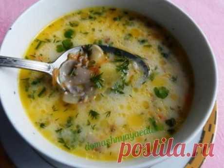 La sopa con las setas y plavlennym por el queso