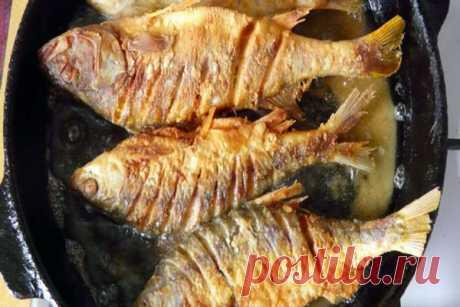 Рыба для жарки на сковороде: какая лучше. Список самой вкусной рыбы